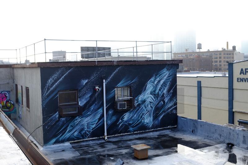 Lower Roof Landing 1